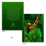Laka Merrie Monarch Note Cards